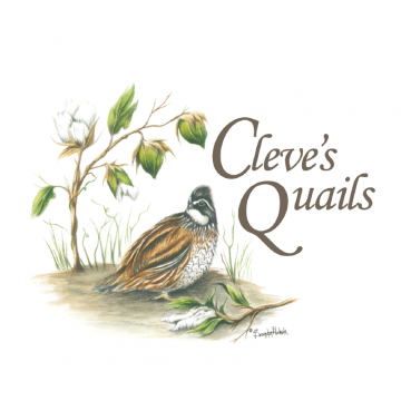 Cleve's Quails Logo - Brooks