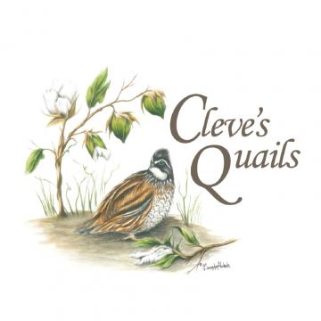 Cleve's Quails Logo - Brooks